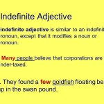 Pengertian dan 16 Contoh Kalimat Indefinite Adjectives